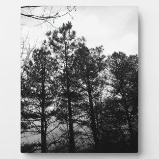霧深く空気のようで幽霊のよく出るな木の森林森の霧 フォトプラーク