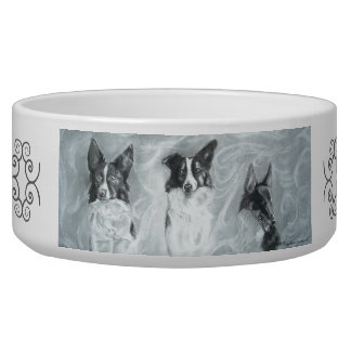 霧、犬ボール、ペット皿のコリー