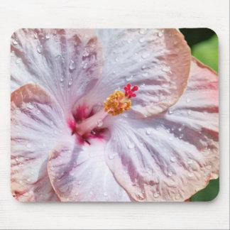 露が付いているハイビスカスの花 マウスパッド