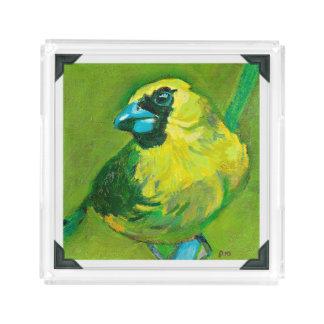 青いくちばしを搭載する緑の鳥 アクリルトレー