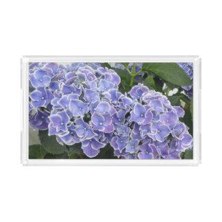 青いアジサイによっては虚栄心の皿が開花します アクリルトレー