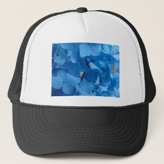青いアジサイ キャップ