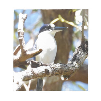 青いカワセミ田園クイーンズランドオーストラリア ノートパッド