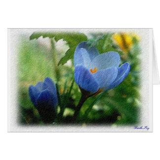 青いクロッカス カード
