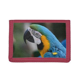 青いコンゴウインコのオウムの三重ナイロン財布のmoneyholder