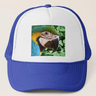 青いコンゴウインコのオウムの帽子 キャップ