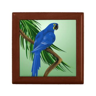 青いコンゴウインコ ギフトボックス