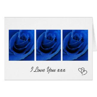 青いバラ愛カード カード