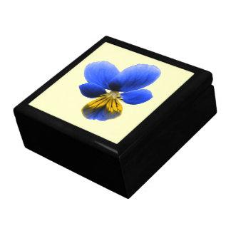青いパンジーのギフト用の箱 ギフトボックス