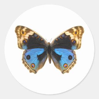 青いパンジーの蝶 ラウンドシール