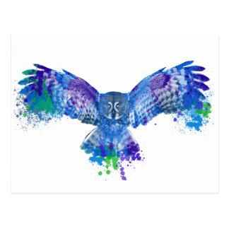 青いフクロウ色のしぶき ポストカード