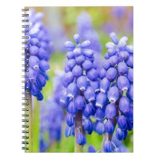 青いムスカリ ノートブック