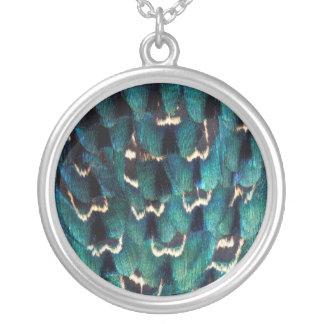 青いリングネックのキジの羽 シルバープレートネックレス