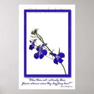 青いロベリアポスター ポスター