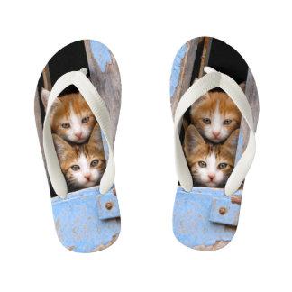 青いヴィンテージの窓の写真の子供のかわいい猫の子ネコ キッズビーチサンダル