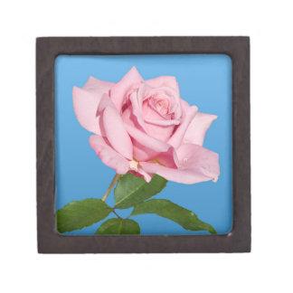 青い優れたギフト用の箱のピンクのバラ ギフトボックス