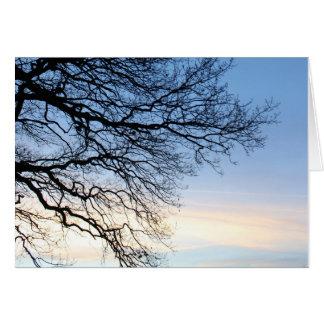 青い冬の空の木のシルエット カード