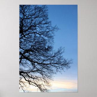 青い冬の空の木のシルエット ポスター