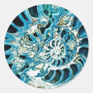 青い化石 ラウンドシール