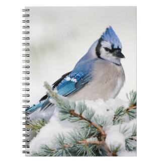 青い地図書ヒマラヤスギのアオカケス ノートブック