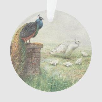 青い孔雀および白はひよことpeahen オーナメント