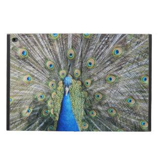 青い孔雀の完全な羽 POWIS iPad AIR 2 ケース