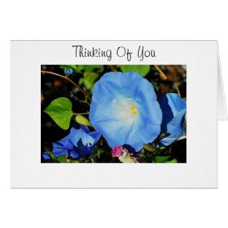 青い朝顔 カード