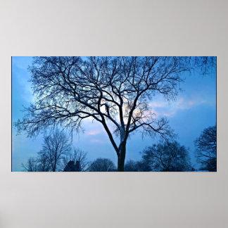 青い木の芸術 ポスター