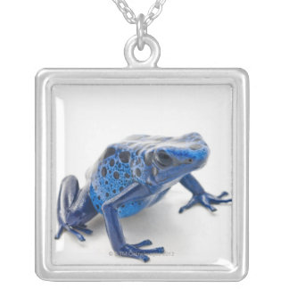 青い毒投げ矢のカエル(Dendrobates Tinctorius) シルバープレートネックレス