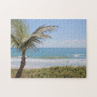 青い海およびココヤシの木の写真 ジグソーパズル
