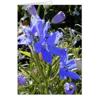 青い白熱花 カード