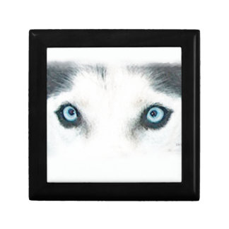 青い目の犬は風を見ることができます ギフトボックス