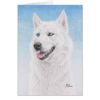 青い目の白いシベリアンハスキー カード