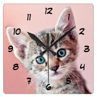 青い目を持つかわいい子ネコ スクエア壁時計