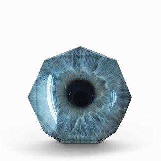 青い眼球 表彰盾