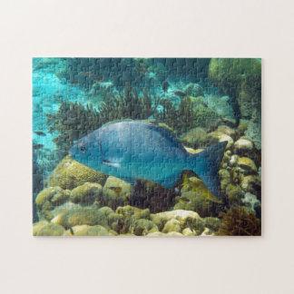 青い礁の魚 ジグソーパズル
