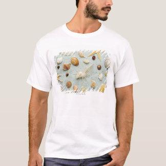 青い背景の分類された貝殻 Tシャツ