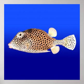 青い背景の斑点を付けられたTrunkfish ポスター