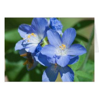 青い花のハッピーバースデーの写真テンプレートカード カード