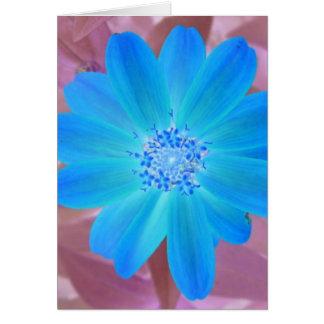 青い花 カード