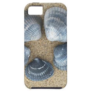 青い貝 iPhone SE/5/5s ケース