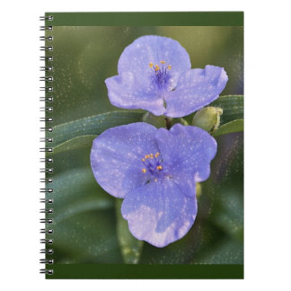 青い野生の花 ノートブック