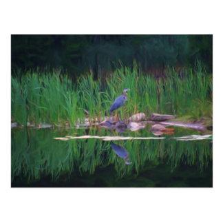 青い鷲の反射の動物の絵画の郵便はがき ポストカード