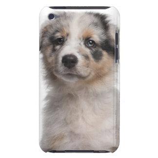 青いMerleのオーストラリアの羊飼いの子犬のクローズアップ Case-Mate iPod Touch ケース