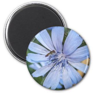 青いRadicchioの花Nの蜂 マグネット