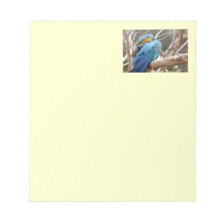 青および金ゴールドのコンゴウインコ ノートパッド