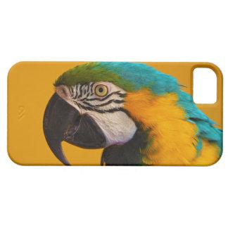 青および黄色のコンゴウインコのAraのAraraunaのオウムの鳥 iPhone SE/5/5s ケース