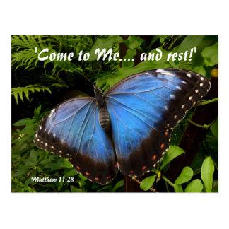 青くエキゾチックな蝶 ポストカード