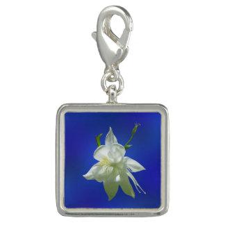 青の白いオダマキ(植物) チャーム