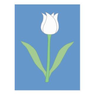 青の白いチューリップ ポストカード